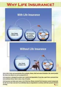 How to find a lost life insurance policy, Haven Life
