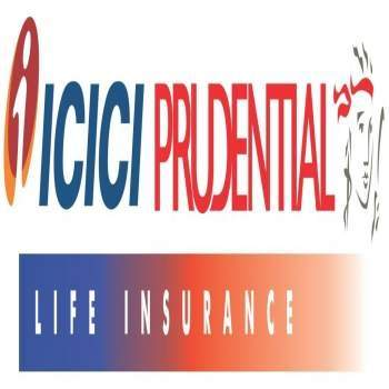 Whole Life vs Variable Universal Life Insurance Policy