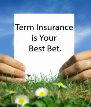 What Influences Term Life Insurance Quotes?