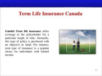 Here s how you can get to the best term life insurance policies SelectDeals