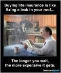 Whole life insurance explained