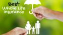 Explain term life insurance