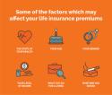 Single premium life insurance