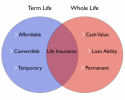Fixed term insurance policy