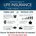 30 year life insurance