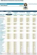 Permanent term life insurance