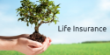 Affordable term life insurance policy
