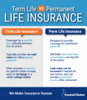 Term life insurance premiums