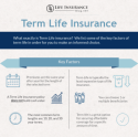 Level term insurance policy