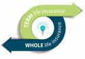 Premium term life insurance