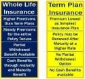 Good term life insurance