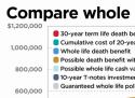 Whole term life insurance