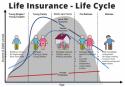 Life insurance estimate