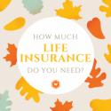 Cheapest insurance
