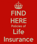 Term life insurance recommendations