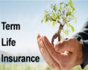 Family life insurance company