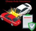 Level benefit term life insurance